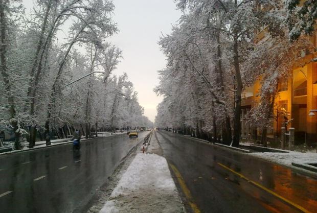 اقدام جالب سفیر سوئیس در تهران / عکس