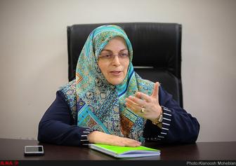 قائم مقام حزب اتحاد ملت ایران :افراد معرفی شده به مجلس، نماد تغییر نیستند